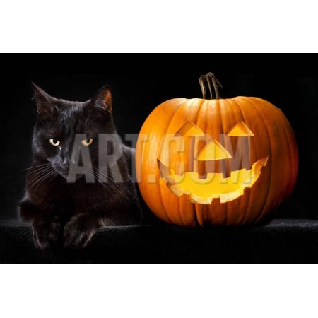 Halloween Pumpkin and Black Cat Scary Spooky and Creepy Horror Holiday Superstition Evil Animal And Print Wall Art By kikkerdirk - Halloween Superstitions