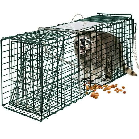 OxGord Live Animal Trap 24
