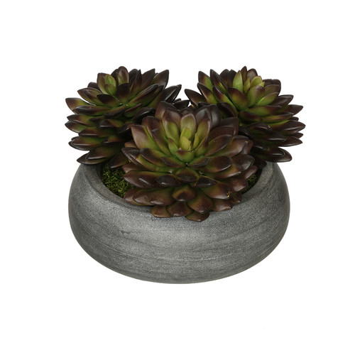 House of Silk Flowers Inc. Artificial Pointed Echeveria Plant in Ceramic Bowl