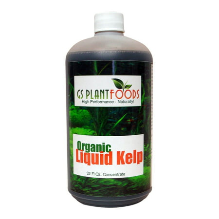Liquid Kelp Organic Seaweed Fertilizer, Natural Kelp Seaweed Based Soil Growth Supplement for Plants, Lawns, Vegetables - 1 Quart (32 Fl. Oz.) of Concentrate