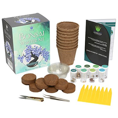 Bonsai Starter Kit - Complete Bonsai Gardening Set w/ Guide Tools Pots & Seeds