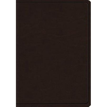 Heirloom Bible - Heirloom Wide Margin Reference Bible-ESV-Art Gilded