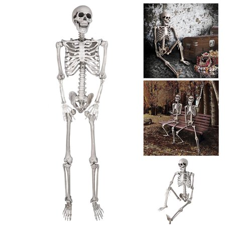 5ft Full Body Skeleton Props with Movable Joints for Halloween Party Decoration (Halloween Decorations For School)
