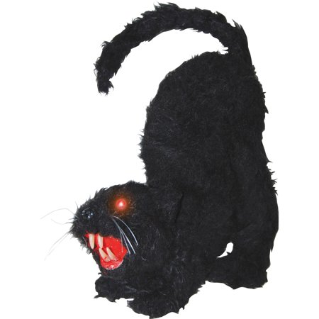Cat with Lights Sound Halloween Decoration