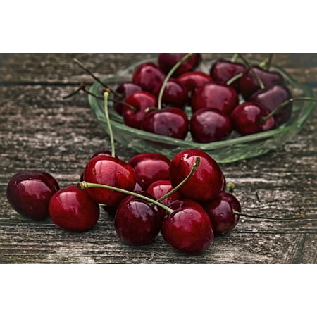 LAMINATED POSTER Red Fruit Retro Sweet Cherry Healthy Cherry Poster Print 11 x -