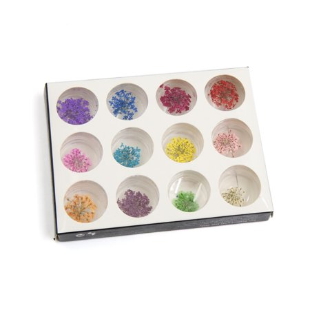 12 Pcs Multicolor DIY Professional Nail Art Tip Dried Flower 3D Nails Decoration - image 1 of 1