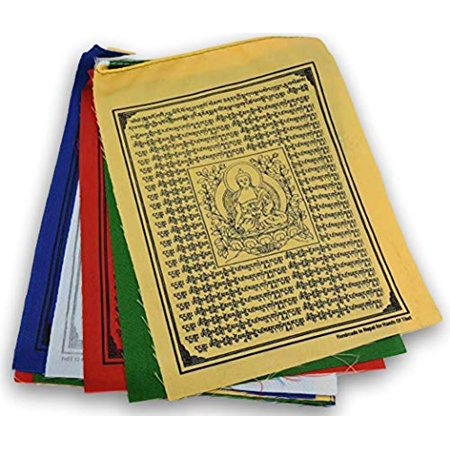 Medicine Buddha Tibetan Prayer Flags From Nepal Set of 10 -