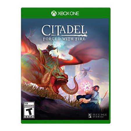 Citadel: Forged with Fire Xbox One - image 1 of 1