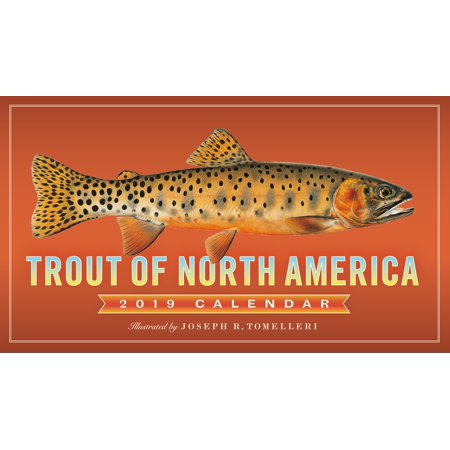 America Wall Calendar (Trout of North America Wall Calendar 2019)