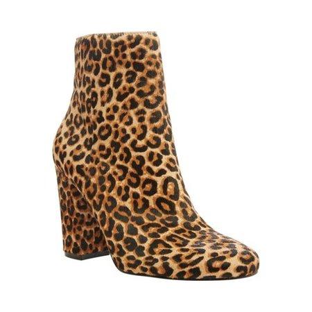 Steve Madden Pixie Leopard Heeled Bootie (Women's)