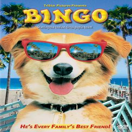 Life Picture Bingo - Bingo (DVD)