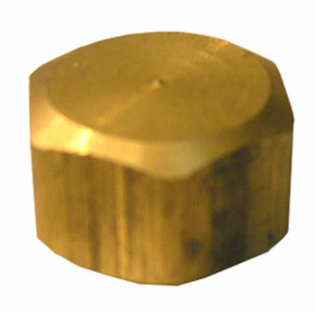 0.625 in. Brass Compresion Cap (0.625 16 Mm Acrylic)