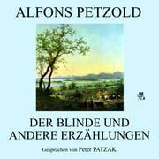 Der Blinde und andere Erzählungen - Audiobook