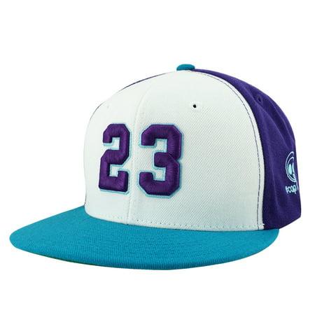 Air Jordan 23 Air - Player Jersey Number #23 Snapback Hat Cap Air Jordan Lebron - White Purple Aqua