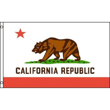 California Flag CA State Banner Pennant 2x3 foot indoor outdoor 24x36 inches (State 2x3 Banner Flag)