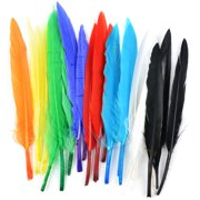 Mini Indian Feathers 24/Pkg-Assorted Colors