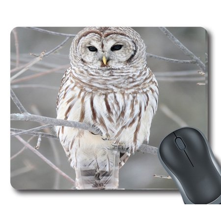GCKG White Cute Owl Perch On Tree Mouse Pad Personalized Unique Rectangle Gaming Mousepad 9.84