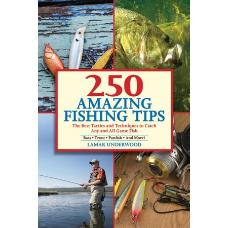 250 Amazing Fishing Tips : The Best Tactics and Techniques to Catch Any and All Game (Best App To Catch A Cheater)