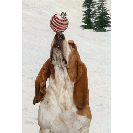 Nobleworks Animal Antics Basset Hound with Ornament on Nose Box of 12 Cute John Lund Dog Christmas -