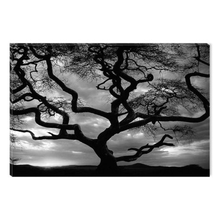 Startonight Canvas Wall Art Black and White Abstract Deep in to the Forest Trees Nature Landscape, Dual View Surprise Artwork Framed Wall Art 100% Original Art Painting 23.62 X 35.43 inch Painted Original Artwork
