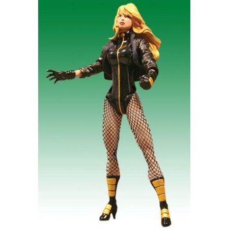 DC Direct: Justice League Of America Series 1 > Black Canary Action Figure - image 1 of 1