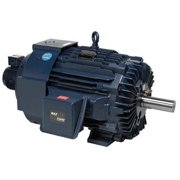 MARATHON MOTORS 184THTS8028 Vector Motor, 3-Phase, 3HP, 230/460V