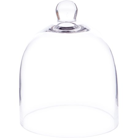 Plymor Brand Bell Jar Glass Display Dome Cloche (Tableware Jars)