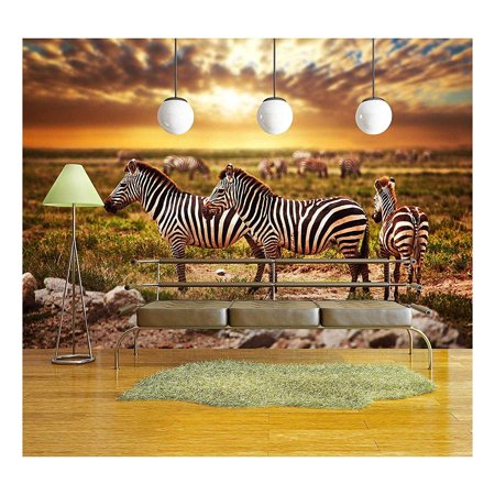 Wall26 Zebras Herd On Savanna At Sunset Africa Safari In Serengeti Tanzania Removable Wall Mural Self Adhesive Large Wallpaper 100x144