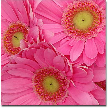 """Trademark Fine Art """"Pink Gerber Daisies"""" Canvas Wall Art by Amy Vangsgard"""
