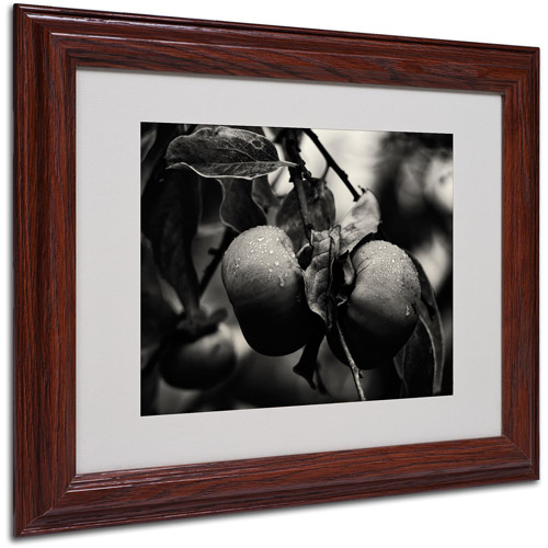 """Trademark Fine Art """"Three Persimmons in the Rain"""" Matted Framed Art by Geoffrey Ansel Agrons, Wood Frame"""