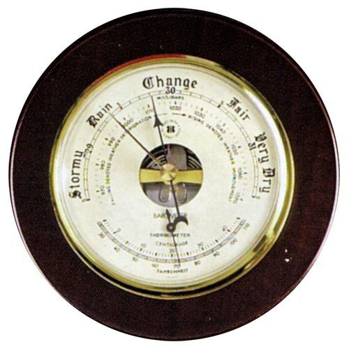 Osprey Barometer and Thermometer by Bey Berk