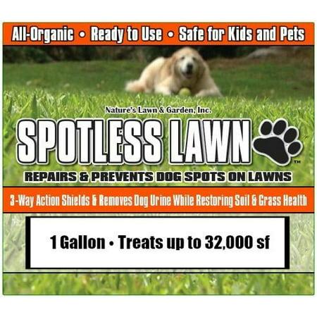 Spotless Lawn - 1 Gallon