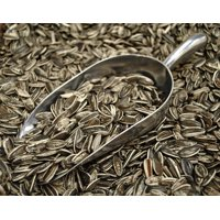 SweetGourmet Roasted In-Shell Sunflower Seeds | Unsalted | 2 Pounds