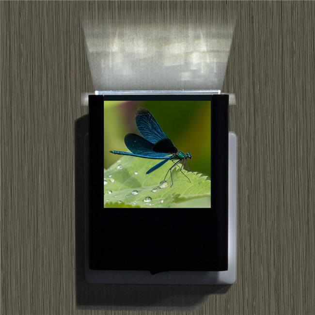 Uniqia UNLC0144 Night Light - Dragonfly 1 Color