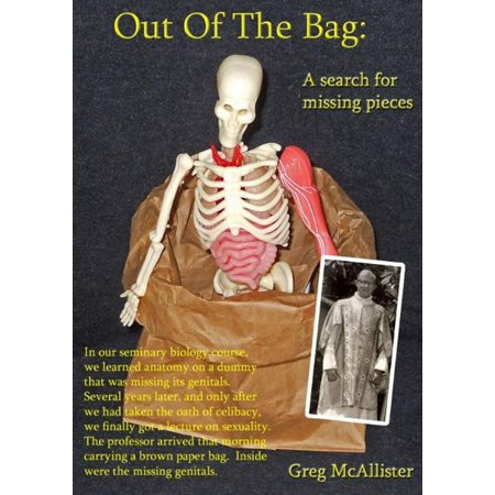 Out of the Bag: A Search for Missing Pieces - eBook