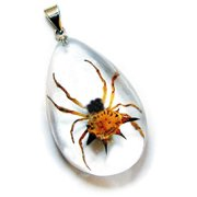 SD1102 Real Bug Necklace-Spiny Spider