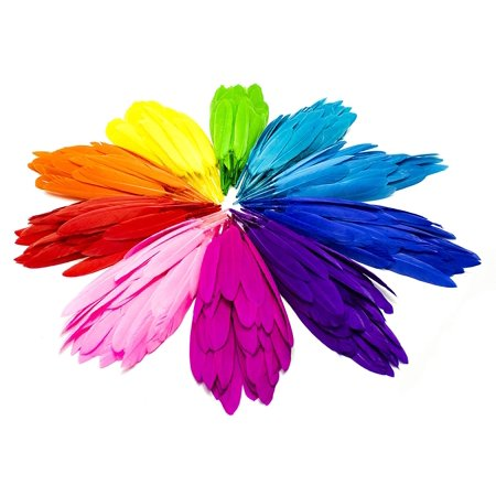 Bastex Colorful Assorted Goose Feathers for crafts 350 pcs. 10 Different Colors, 4 to 6 inches in Length. Great for Decorative Arts and Crafts, Classrooms, Dreamcatcher, Party - Halloween Crafts For Classroom Party