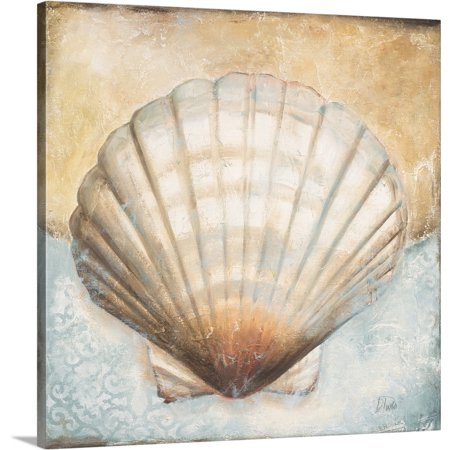 Great BIG Canvas | Patricia Pinto Premium Thick-Wrap Canvas entitled Seashell Collection III