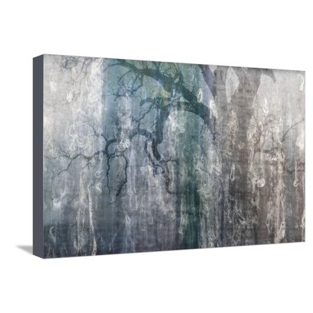 USA, California, Carrizo Plain National Monument. Abstract of oak tree and metal Stretched Canvas Print Wall Art By Jaynes (Metal Oak Tree)