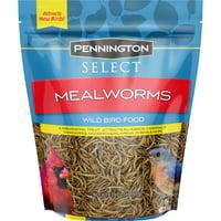 Pennington Select Mealworms, Wild Bird Food, 17.6 oz. Bag