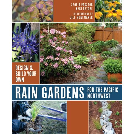 rain gardens for the pacific northwest design and build your own design build your own