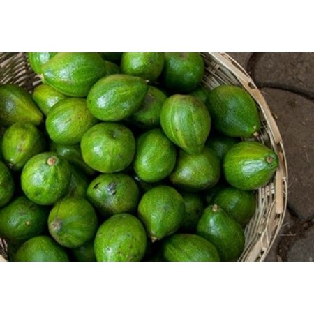 Benin Ouidah Produce Market Avocados Canvas Art - Cindy Miller Hopkins DanitaDelimont (17 x 11)
