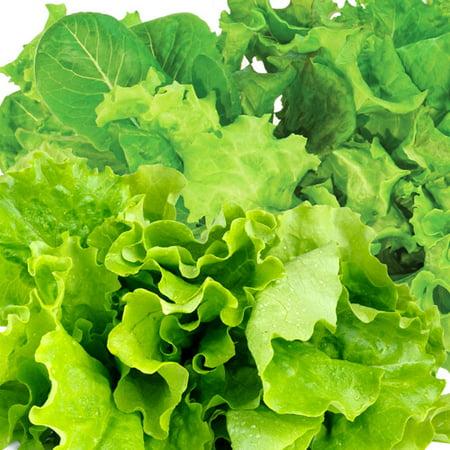 Miracle-Gro AeroGarden Heirloom Salad Greens 3-Pod Seed Pod Kit