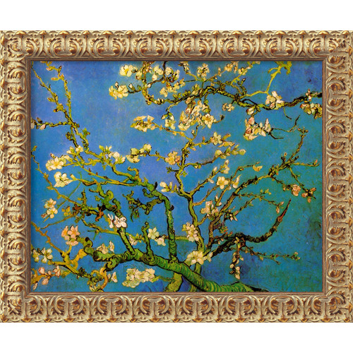 Amanti Art 'Almond Blossom' by Vincent Van Gogh Framed Painting Print