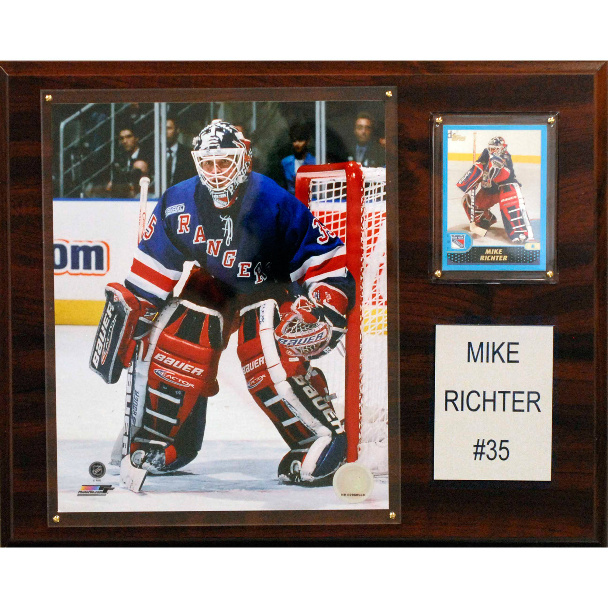 C&I Collectables NHL 12x15 Mike Richter New York Rangers Player Plaque