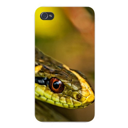Plastic Snake (Apple Iphone Custom Case 5 / 5s AND SE White Plastic Snap on - Green Reptile Snake Slithering)