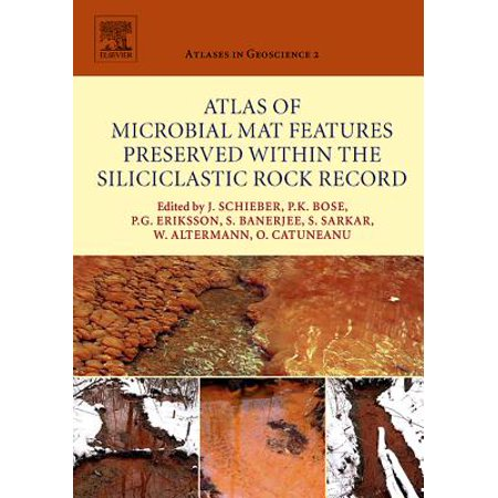 Atlas of Microbial Mat Features Preserved within the Siliciclastic Rock Record - eBook (Within The Rock)