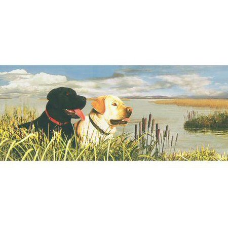878824 Best Friends Dogs By The Lake Wallpaper