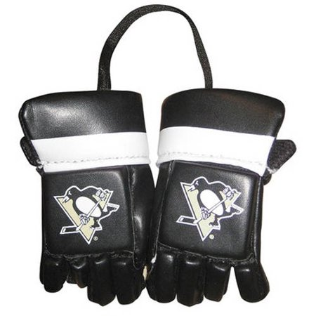 NHL Pittsburgh Penguins Mini Hockey Gloves - Walmart.com