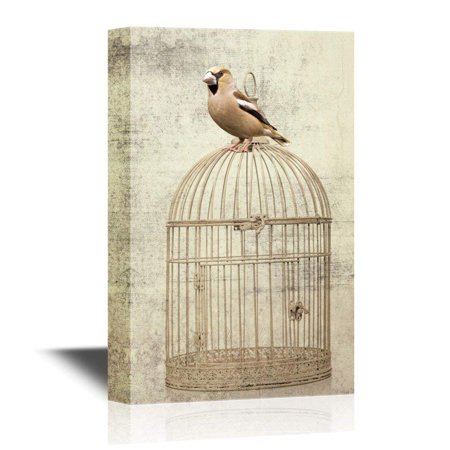 wall26 - Canvas Wall Art - Bird Sitting on Bird Cage on Vintage Background - Gallery Wrap Modern Home Decor | Ready to Hang - 32x48 inches